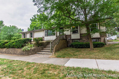 Grand Rapids Single Family Home For Sale: 2941 Hampshire Boulevard SE
