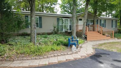 Barryton MI Single Family Home For Sale: $129,000