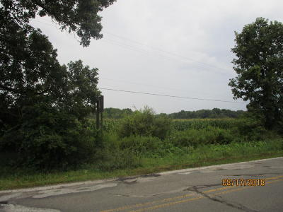Berrien County, Branch County, Calhoun County, Cass County, Hillsdale County, Jackson County, Kalamazoo County, St. Joseph County, Van Buren County Residential Lots & Land For Sale: B Drive S
