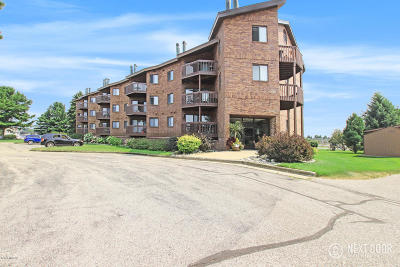 Ludington Condo/Townhouse For Sale: 368 Harbor Drive #409