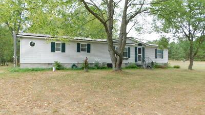 White Cloud Single Family Home For Sale: 5222 E 3 Mile Road