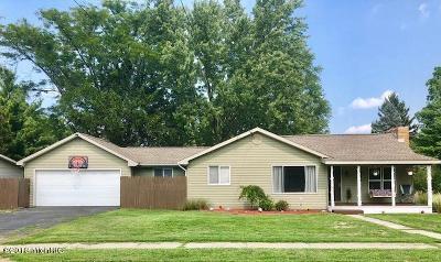 Berrien County, Branch County, Calhoun County, Cass County, Hillsdale County, Jackson County, Kalamazoo County, St. Joseph County, Van Buren County Single Family Home For Sale: 150 Jermaine Street