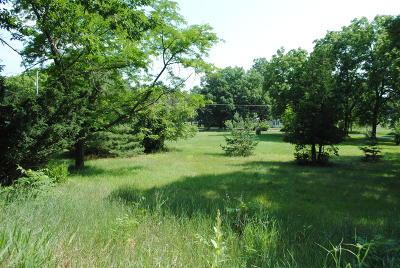 Residential Lots & Land For Sale: 3850 Allegan Dam Road