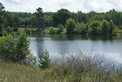 Canadian Lakes Residential Lots & Land For Sale: 12455 Summerhill Drive
