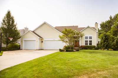 Holland Single Family Home For Sale: 346 Sand Castle Drive