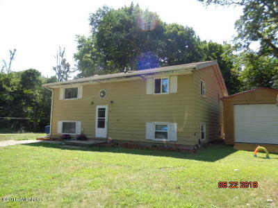 Benton Harbor Single Family Home For Sale: 256 Pollard Avenue