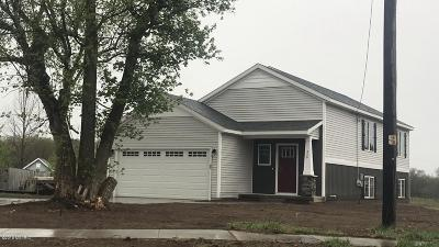 Grand Rapids Single Family Home For Sale: 2901 Woodside Avenue SE