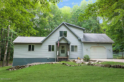 Mecosta County Single Family Home For Sale: 12162 Lone Wolf Trail