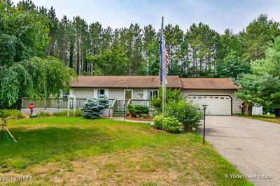 Howard City Single Family Home For Sale: 8763 Navaho Trail