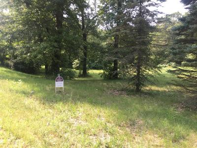 Plainwell Residential Lots & Land For Sale: 00000 Lindsey Road