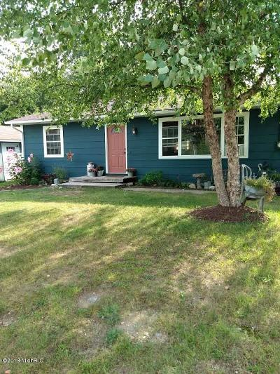 Oceana County Single Family Home For Sale: 72 Munn Street