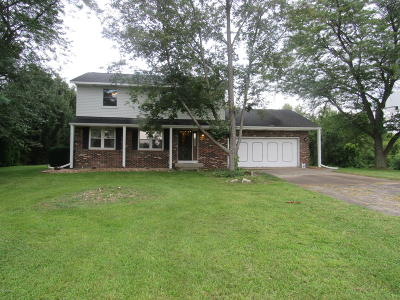 Berrien Springs Single Family Home For Sale: 6233 Long Lake Road