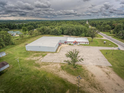 Evart Commercial For Sale: 11377 Us 10 Highway