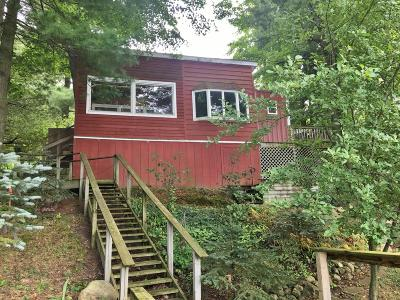 Evart Single Family Home For Sale: 299 Negaunee Lake Drive