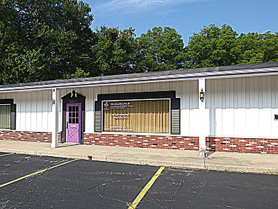 Stevensville Commercial For Sale: 2634 W John Beers Road #4