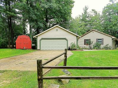 Newaygo Single Family Home For Sale: 6112 Cole Drive