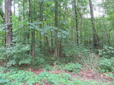 Cass County Residential Lots & Land For Sale: Track #10 Walnut Road