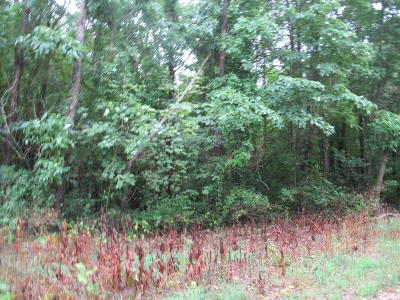Cass County Residential Lots & Land For Sale: Track #12 Lakeview Drive