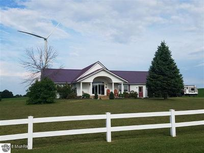 Missaukee County Single Family Home For Sale: 11785 S Dickerson Road