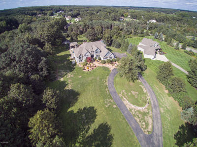 Kalamazoo Single Family Home For Sale: 9644 W P Avenue