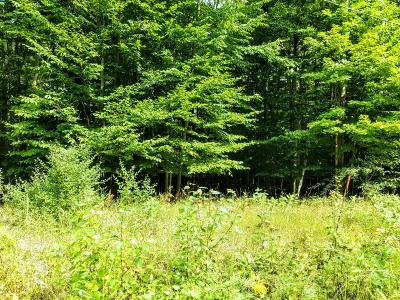 Antrim County Residential Lots & Land For Sale: Lot 39 Shawnee Trail