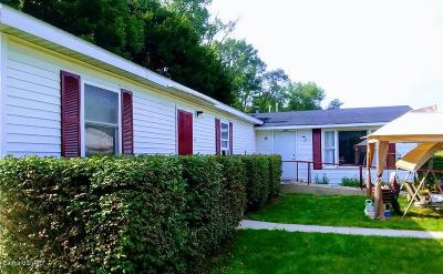 Big Rapids Single Family Home For Sale: 10255 Northland Drive