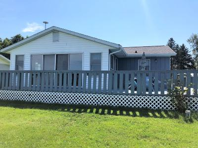 Battle Creek Single Family Home For Sale: 1187 Swan Cove Drive Drive