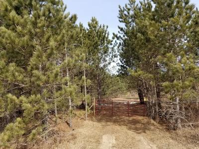 Oceana County Residential Lots & Land For Sale: 3816 M-20 Highway