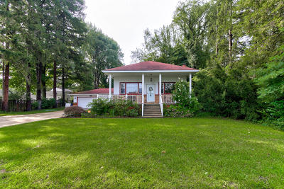 Holland, West Olive Single Family Home For Sale: 1254 S Shore Drive
