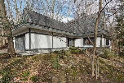 Harbert, Lakeside, New Buffalo, Sawyer, Three Oaks, Union Pier Single Family Home For Sale: 7043 Sand Dune Drive