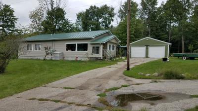 Rodney MI Single Family Home For Sale: $59,900