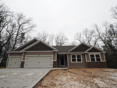 Twin Lake Single Family Home For Sale: 4462 Manchester Lane
