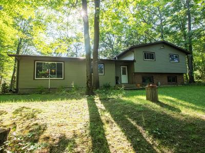 Muskegon Single Family Home For Sale: 3975 W Giles Road