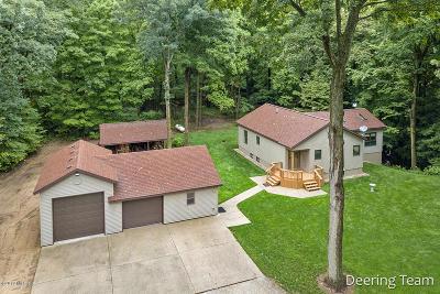 Newaygo Single Family Home For Sale: 7661 S Snake Ridge