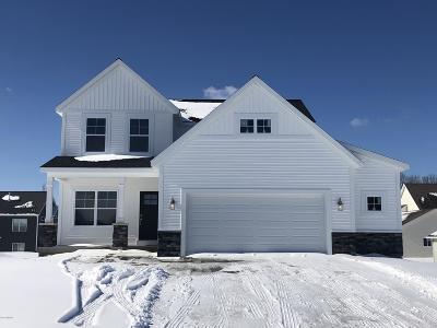Zeeland Single Family Home For Sale: 595 Settlement Lane #67