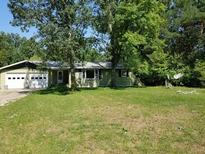 Branch Single Family Home For Sale: 11886 W Us-10