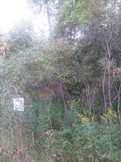 Osceola County Residential Lots & Land For Sale: W 5 Mile Road