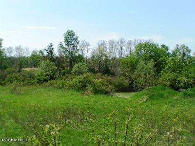 Ionia County Residential Lots & Land For Sale: 4315 Sayles Road #Parcel '