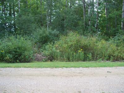 Barryton Residential Lots & Land For Sale: 3rd Street