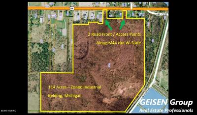 Ionia County Residential Lots & Land For Sale: 1001 W State Road