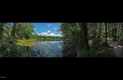 Kalamazoo County Residential Lots & Land For Sale: E De Avenue