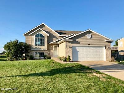 Hudsonville Single Family Home For Sale: 2117 Waler Drive