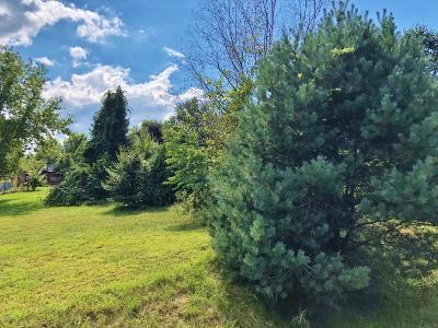 Allegan County Residential Lots & Land For Sale: 5922 102nd Avenue