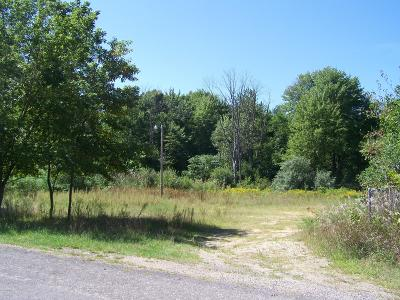 Covert Residential Lots & Land For Sale: 34494 West Street