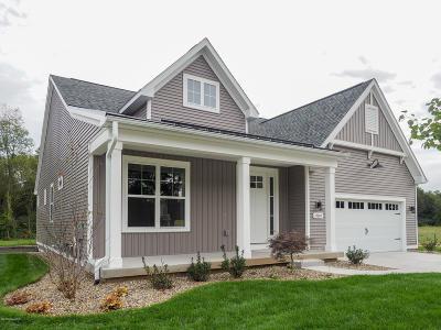 Kalamazoo County Condo/Townhouse For Sale: 10607 Gracie Lane