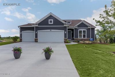 Hudsonville Single Family Home For Sale: 3569 Jamesfield Drive