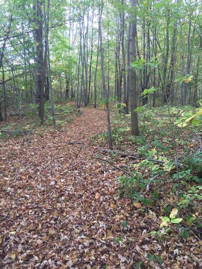 Allegan County Residential Lots & Land For Sale: Blue Star Highway And 60th