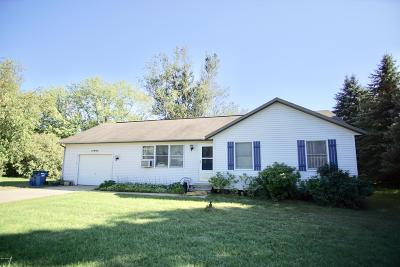 Grand Haven Single Family Home For Sale: 14092 Lincoln Street