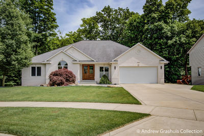 Grand Rapids Single Family Home For Sale: 3944 Tallman Creek Drive NW