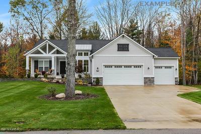 Hudsonville Single Family Home For Sale: 3402 Jamesfield Court